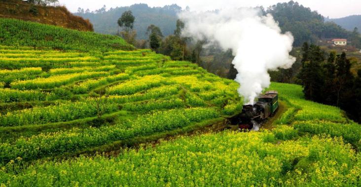 中國|四川 陽春三月花海小火車 工業革命時代的活化石 @YA !野旅行-吃喝玩樂全都錄