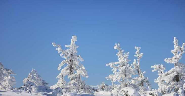 山形藏王雪季限定!藍天的藏王樹冰真是太美了 @YA !野旅行-玩樂全世界