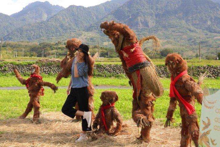 富麗稻野動物迷蹤-銀背猩猩現身花東縱谷 @YA !野旅行-吃喝玩樂全都錄