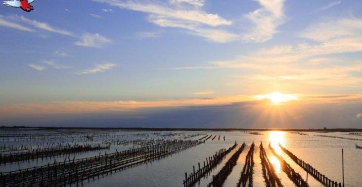 從安平到北門 台南最美的海岸風景線 @YA 野旅行-陪伴您遨遊四海