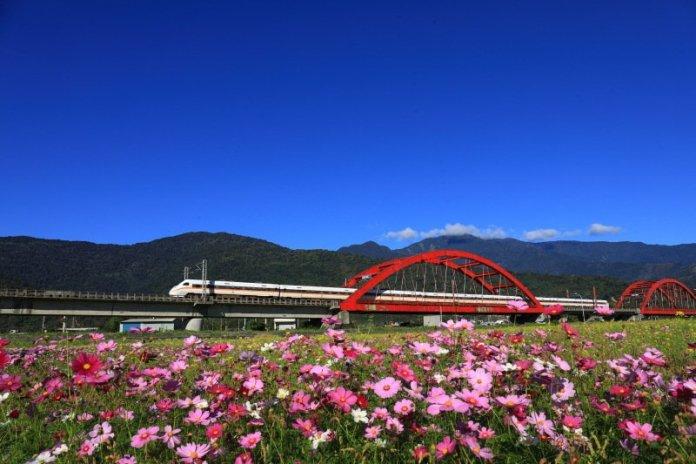 夏日花東縱谷風情無限 熊掌稻田意象超可愛 @YA !野旅行-吃喝玩樂全都錄
