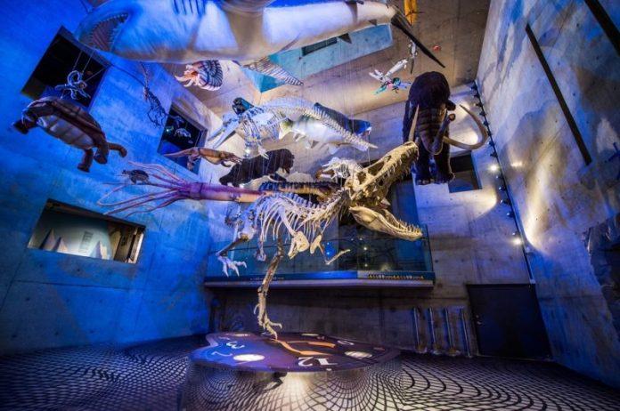 精選全台8大好玩又好拍的博物館  參加故宮古裝宮廷趴一秒穿越、到奇美博物館感受歐風聖誕節慶感  文青感十足的南科考古館、環遊世界探訪各國計程車 @YA 野旅行-陪伴您遨遊四海
