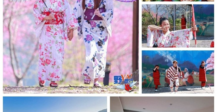 秒到日本的感動 新竹悅峰山莊櫻花盛開 @YA !野旅行-玩樂全世界