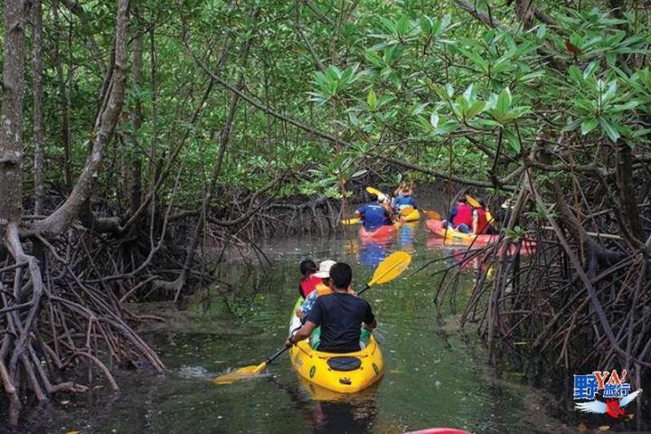 泰國綠色旅遊推薦 – 安達曼珍珠普吉島 除了玩水還可以玩這些更有趣 @YA !野旅行-吃喝玩樂全都錄
