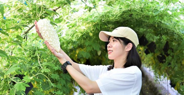 跟著食物去旅行 食農旅遊掀起觀光新價值 農糧署「產銷履歷樂悠遊績優單位」大公開 @YA !野旅行-玩樂全世界