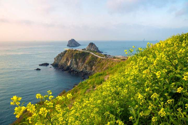 聽覺、視覺、味覺的類釜山旅遊 我準備好 你準備好了嗎?! @YA 野旅行-陪伴您遨遊四海