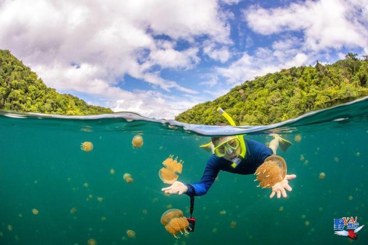跟著KKDAY旅遊泡泡玩帛琉 擁抱Tiffany藍海洋風情 @YA !野旅行-吃喝玩樂全都錄
