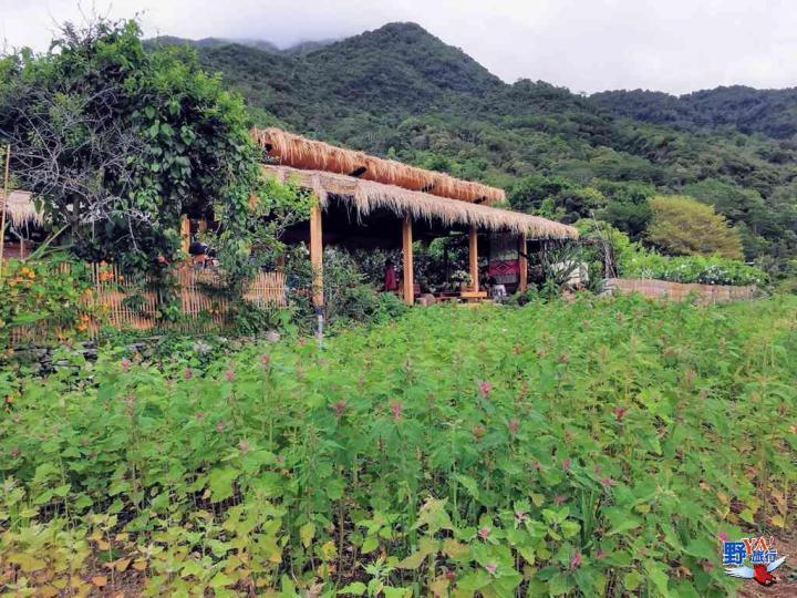 漫步紅石步道蓋亞那嘗布農美食 超棒的台東海端部落小旅行 @YA !野旅行-吃喝玩樂全都錄