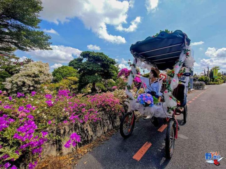 搭協力車悠遊田尾 繽紛花海、綠色隧道秘境尋幽 @YA !野旅行-吃喝玩樂全都錄