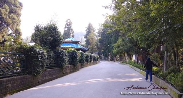 Up on Tashi Namgyal Academy