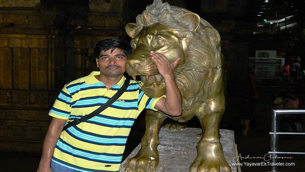 lionwithman