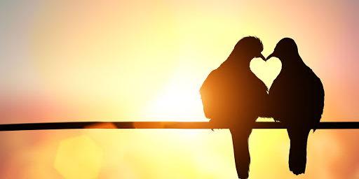 Aşkın Bitmeyen Hali  Recai Oktan