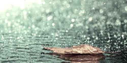 Yağmurlar Melahat Atlamaz