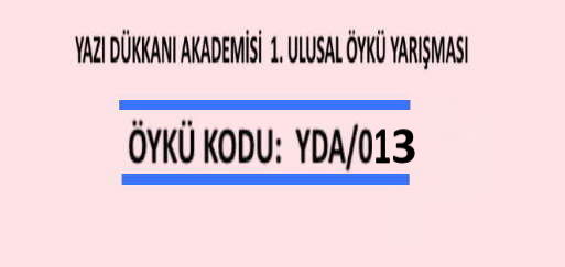 Öykü Yarışması Öykü Kodu: YDA/013