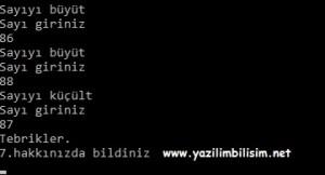 sayi_tahmin