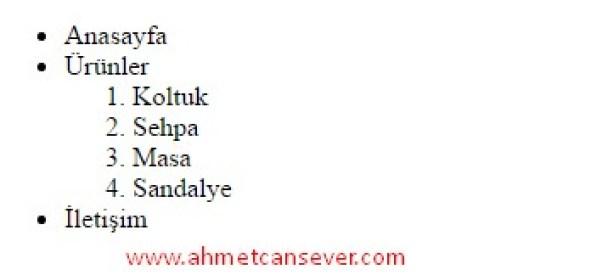 liste_ornekleri_2