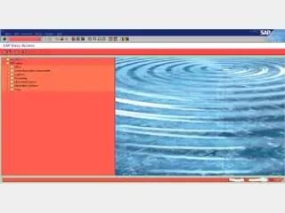 Personalized SAP GUI color