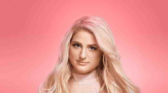 Megan Trainor's father hospitalized after hit and run