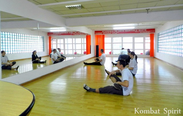 Arte martiale Kombat Spirit