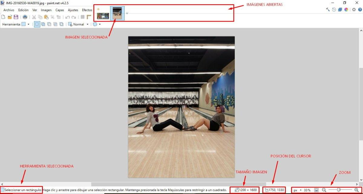 Informacion imagen paintnet