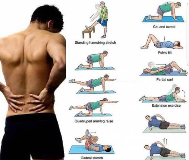 Low Back Pain Exercises Amazing Training Tips For Back
