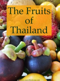 The Fruits of Thailand