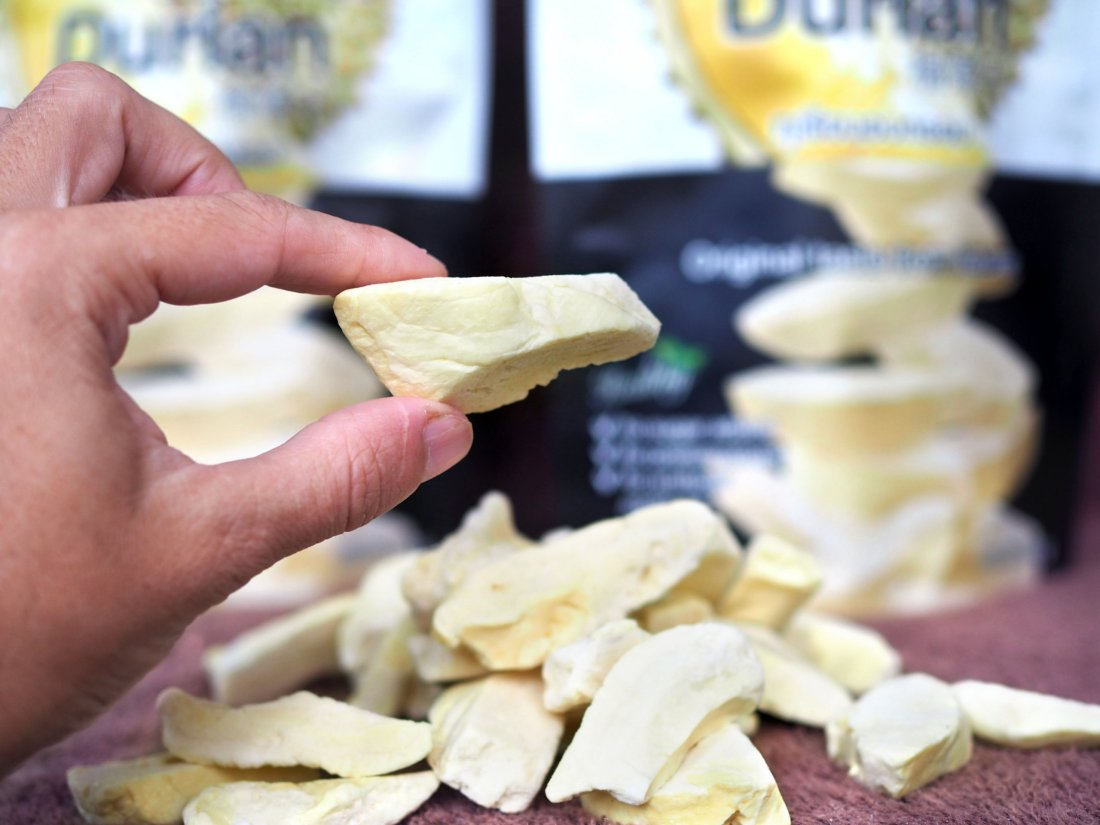 Showing size of freeze dried durian pieces