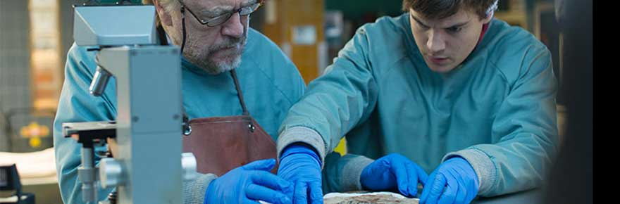 The Autopsy of Jane Doe (2016) - Review