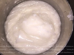 a-successful-trial-by-vacuum-emulsifying-mixing-machine-03