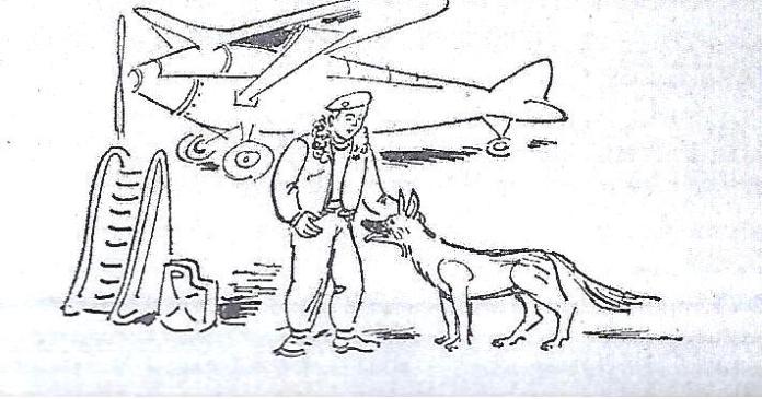 טייס משנה פנג ציור 1