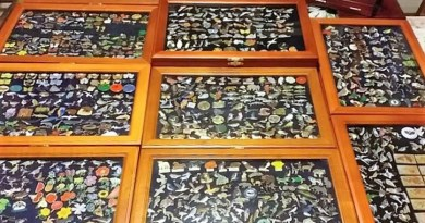 Valuable badge collection stolen from Woodham Ferrers house