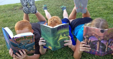 Southend summer reading challenge goes digital