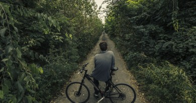 Cycle routes backed by Chelmsford City Council