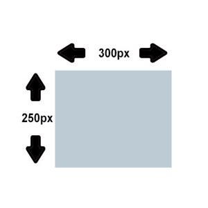 Website Advertisement (300x250px)