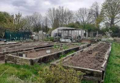 Construction work threat to Wanstead allotment