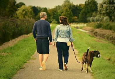 Best foot forward for county's walking strategy