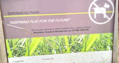 Public engagement exercise to decide on new play area for Basildon park