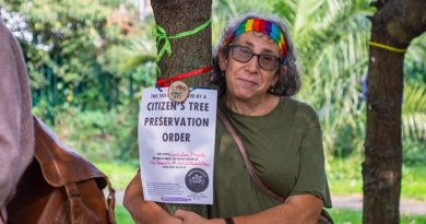 Campaigners in fight to save trees in Lea Bridge