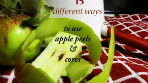 15 Ways to Use Apple Peels & Cores