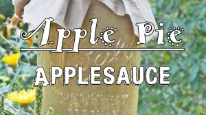 Apple Pie Applesauce