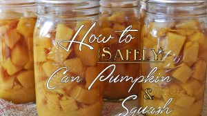 How to {Safely} Can Pumpkin & Squash