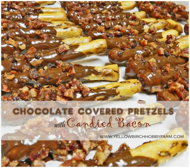 Chocolate Covered Pretzels with Candied Bacon- Yellow Birch Hobby Farm