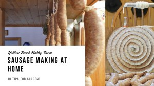 Sausage Making at Home: 10 Tips for Success