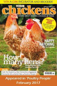 Your Chickens Magazine