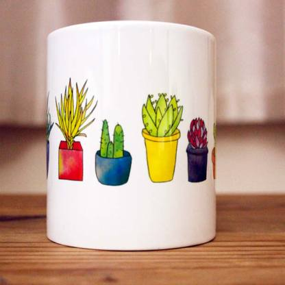 Succulents Gift