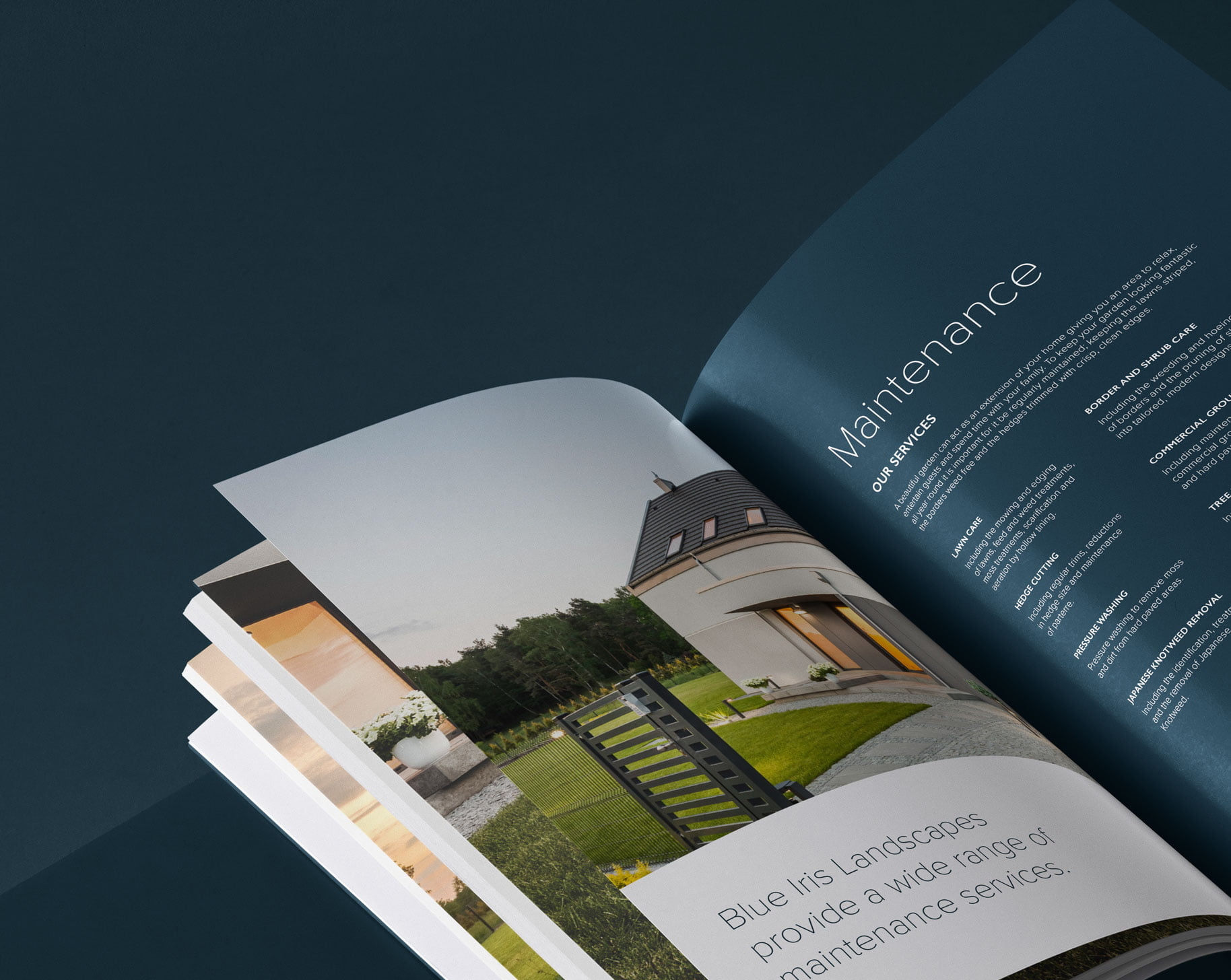 Graphic design and website design by Yellow Circle for Blue Iris Landscapes