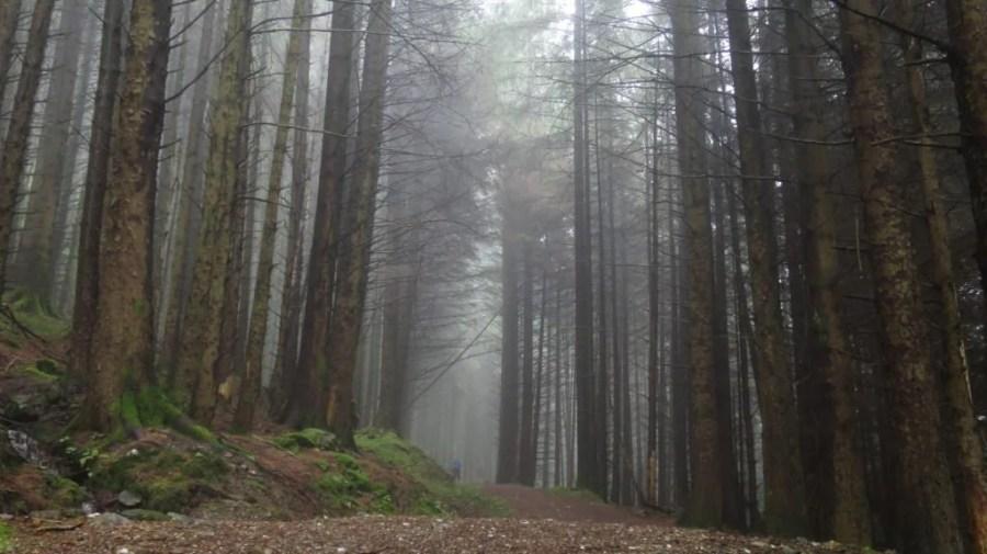IMG 2232 1024x575 - A long weekend cycling on Scotland's Adventure Coast – Argyll