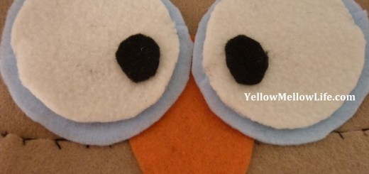DIY halloween owl costume