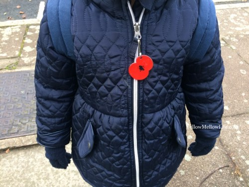 poppies and Remembrance Day