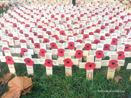 Observing remembrance day with kids